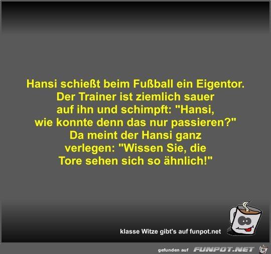 Hansi schießt beim Fußball ein Eigentor