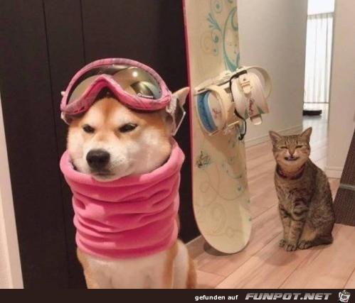 Bereits zum Snowboarden