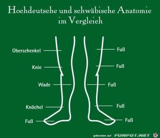 Der-schwäbische-Fuß.jpg auf www.funpot.net
