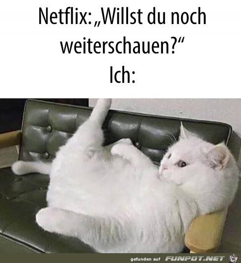 Netflix weiterschauen