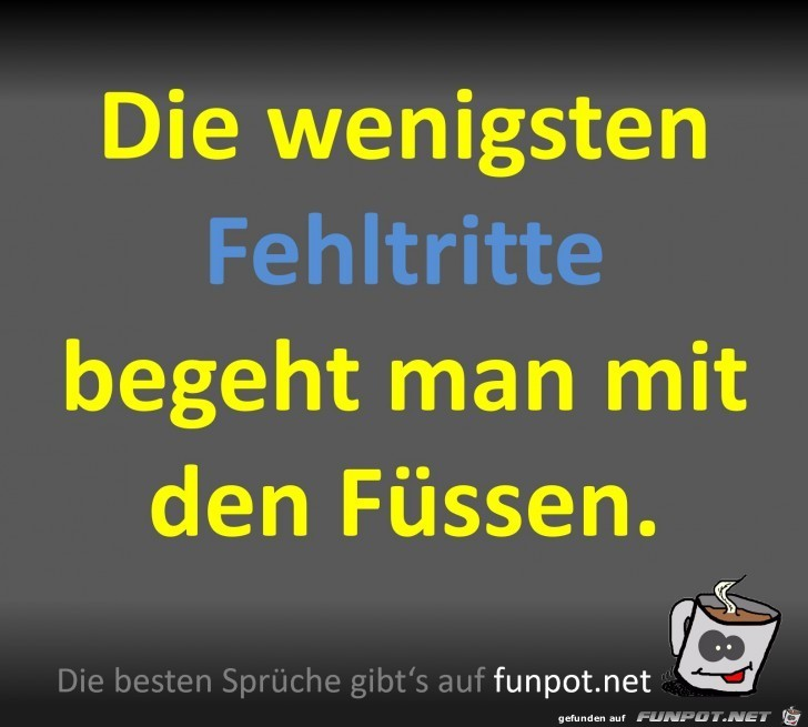 Fehltritte