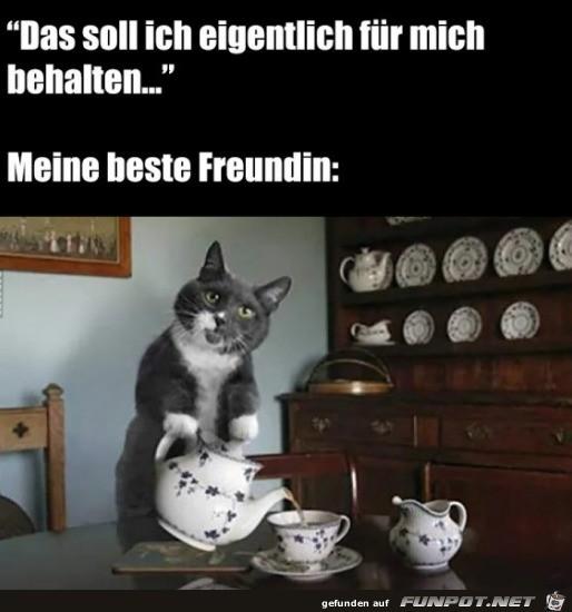 Lass-uns-Tee-trinken-und-reden.jpg auf www.funpot.net