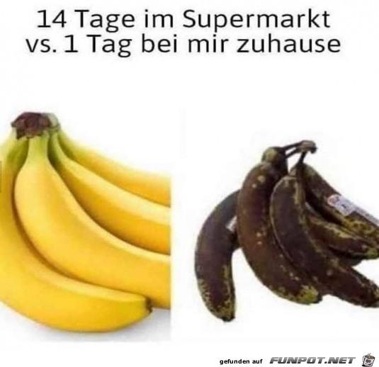 Böse Bananen