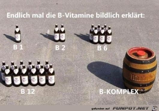 Die B-Vitamine