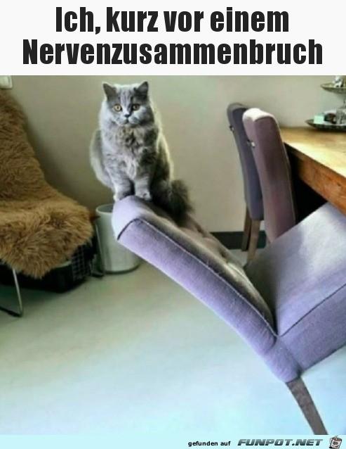 Der Stuhl hält