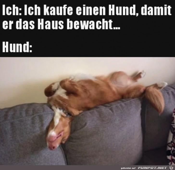 Super-Wachhund.jpg auf www.funpot.net