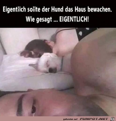 Super Wachhund