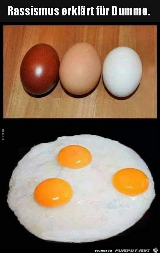 Rassismus erklärt für Dumme