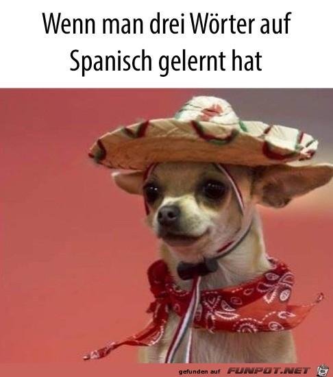 Drei Worte Spanisch gelernt