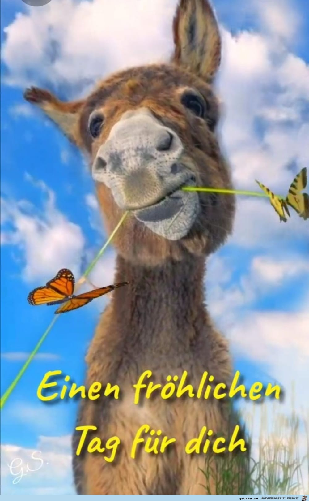 froehlicher Tag