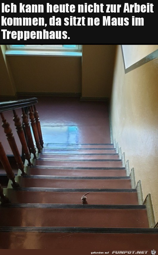 Kann-heute-nicht-zu-Arbeit-kommen.jpg auf www.funpot.net