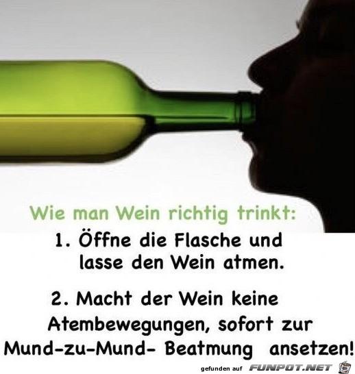 So trinkt man Wein richtig