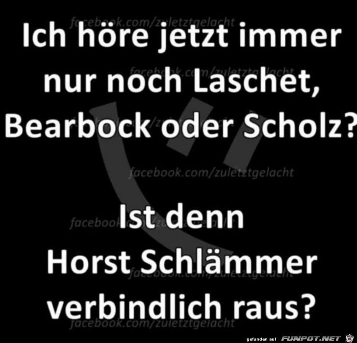 Ist Horst Schlämmer raus?