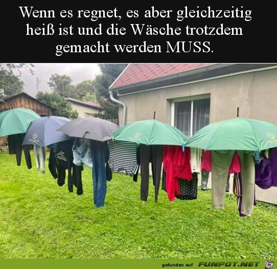 Lustige-Idee-mit-den-Schirmen.jpg auf www.funpot.net