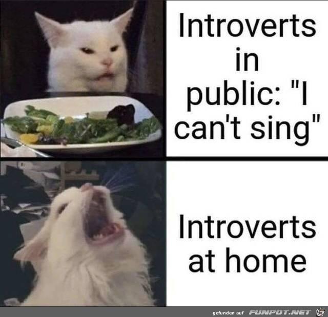 Die Introvertierten