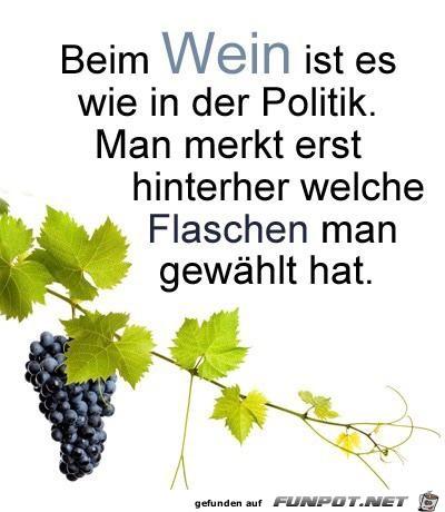 Beim-Wein-ist-es-wie-in-der-Politik.jpg auf www.funpot.net