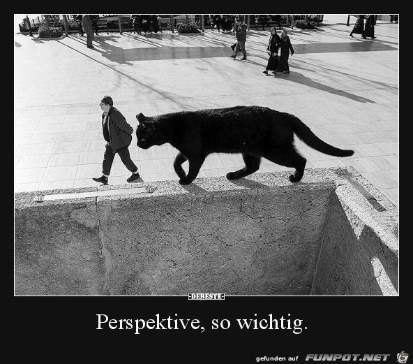Perspektive ist so wichtig