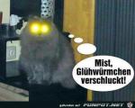 Gluehwuermchen.png auf www.funpot.net