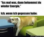 Energie-nach-dem-Essen.jpg auf www.funpot.net