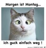 Morgen-ist-Montag.jpg auf www.funpot.net