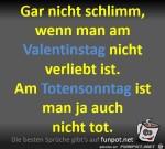 Nicht-schlimm,-wenn-man-am-Valentinstag-nicht-verliebt-ist.jpg auf www.funpot.net