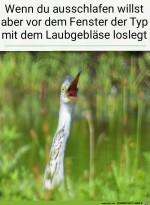 Das-elende-Laubgebläse.jpg auf www.funpot.net