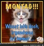 Montag.jpg auf www.funpot.net