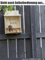 Snackbar-für-Eichhörnchen.jpg auf www.funpot.net