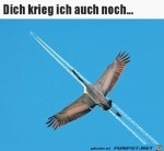 Ich-kriege-dich.jpg auf www.funpot.net