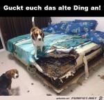 Guckt-euch-das-alte-Ding-an.jpg auf www.funpot.net