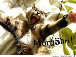 Morgaehn.jpg auf www.funpot.net