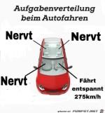Aufgabenverteilung-beim-Autofahren.jpg auf www.funpot.net
