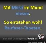 Raufaser-Tapeten.jpg auf www.funpot.net
