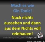 Gin-Tonic.jpg auf www.funpot.net