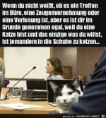 Witzige-Katze.jpg auf www.funpot.net