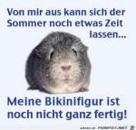 Sommer-noch-Zeit-lassen.......jpg auf www.funpot.net