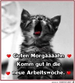 Guten-Morgaeaeaeaehn.jpg auf www.funpot.net