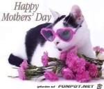 mothersday.jpg auf www.funpot.net