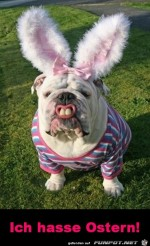 Ostern-mag-ich-nicht.jpg auf www.funpot.net