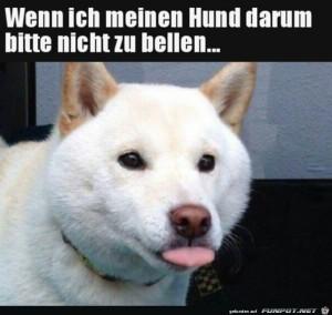 Wenn-mein-Hund-nicht-bellen-soll.jpg auf www.funpot.net
