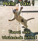 Fahrt-ins-Wochenende.jpg auf www.funpot.net