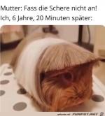 Fass-die-Schere-nicht-an.jpg auf www.funpot.net