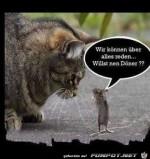 Wir-können-über-alles-reden.jpg auf www.funpot.net