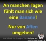 Banane.jpg auf www.funpot.net