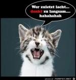 Wer-zuletzt-lacht.jpg auf www.funpot.net