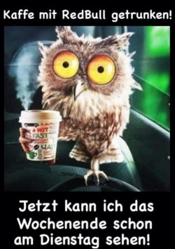Kaffee-mit-Redbull...Dienstag.jpg auf www.funpot.net