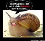 Sonntags-lass-ich-mich-nicht-hetzen.jpg auf www.funpot.net