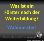 Waldmeister.jpg auf www.funpot.net