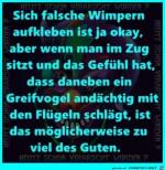 Falsche-Wimpern.jpg auf www.funpot.net
