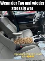 War-wohl-etwas-stressig.jpg auf www.funpot.net